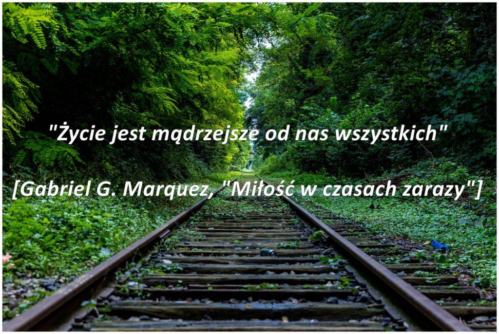 marquez5