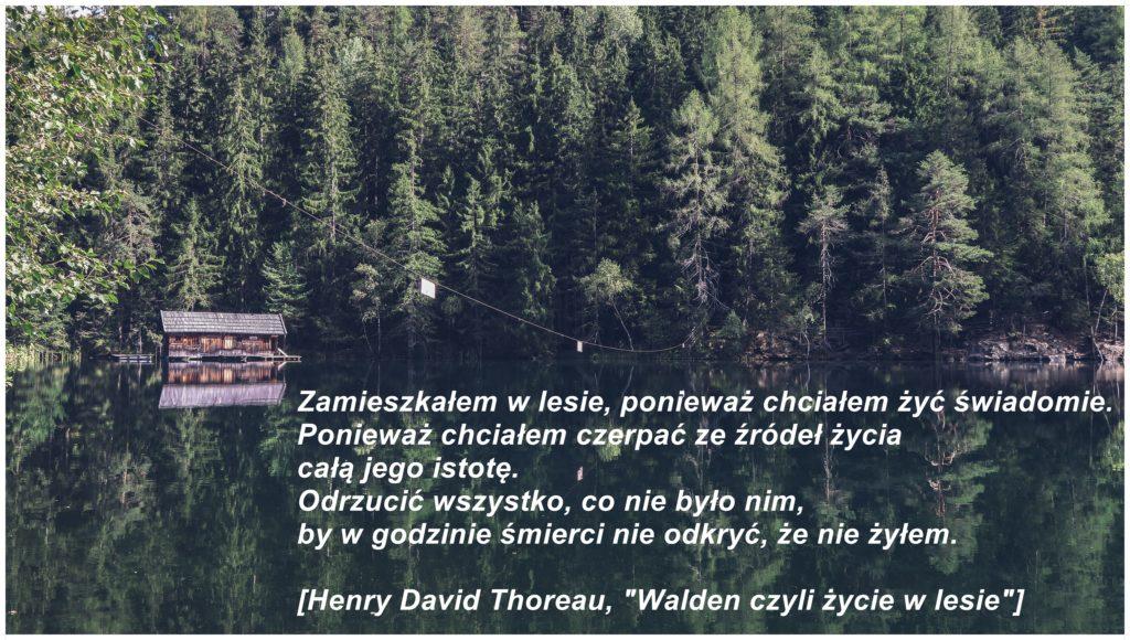 thoreauwalden